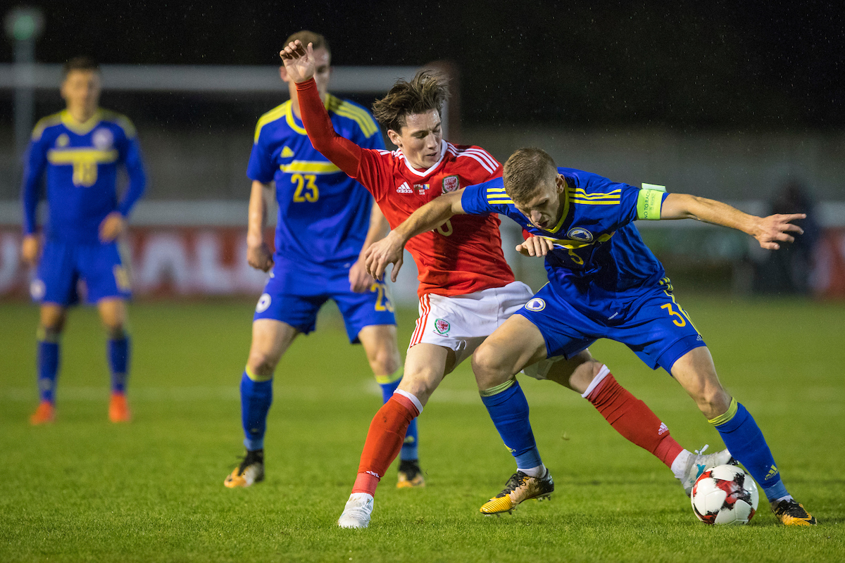 Bosnia inflict disappointment on Wales
